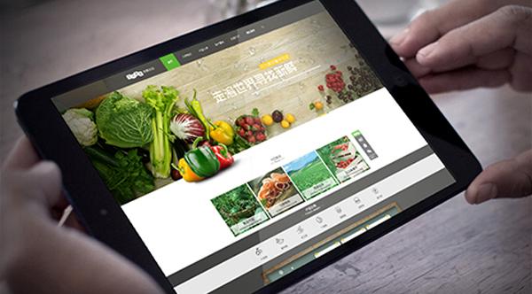 农业类商城网站建设开发制作解决方案